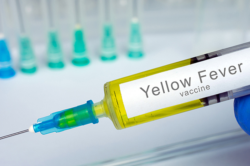 Long Sault Travel Clinic Yellow Fever Vaccine